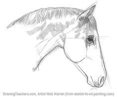 236x195 How To Draw A Tiger Tekenen Tigers, Horses And To Draw