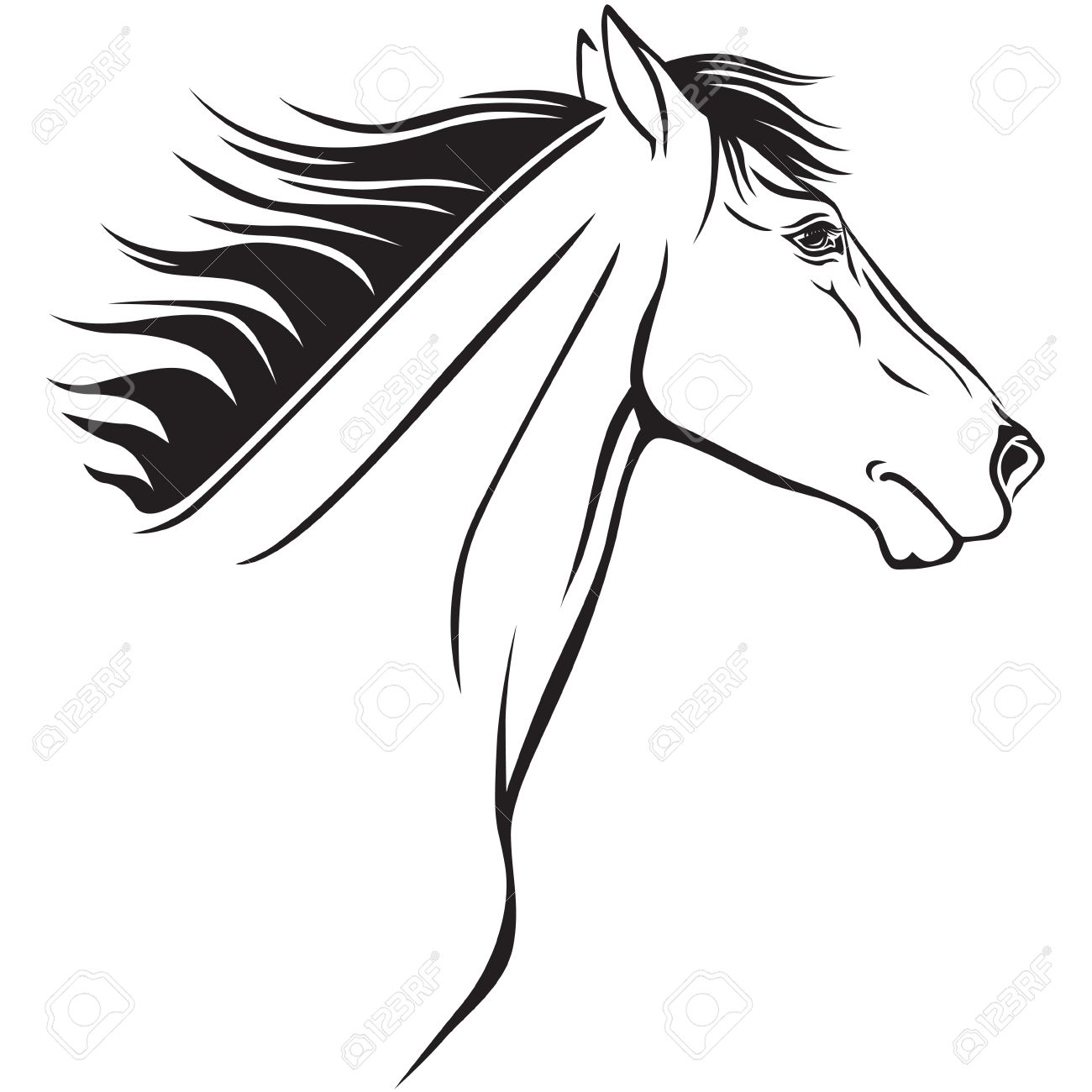 1300x1300 Contour Image Of A Beautiful Horses Profile Royalty Free Cliparts