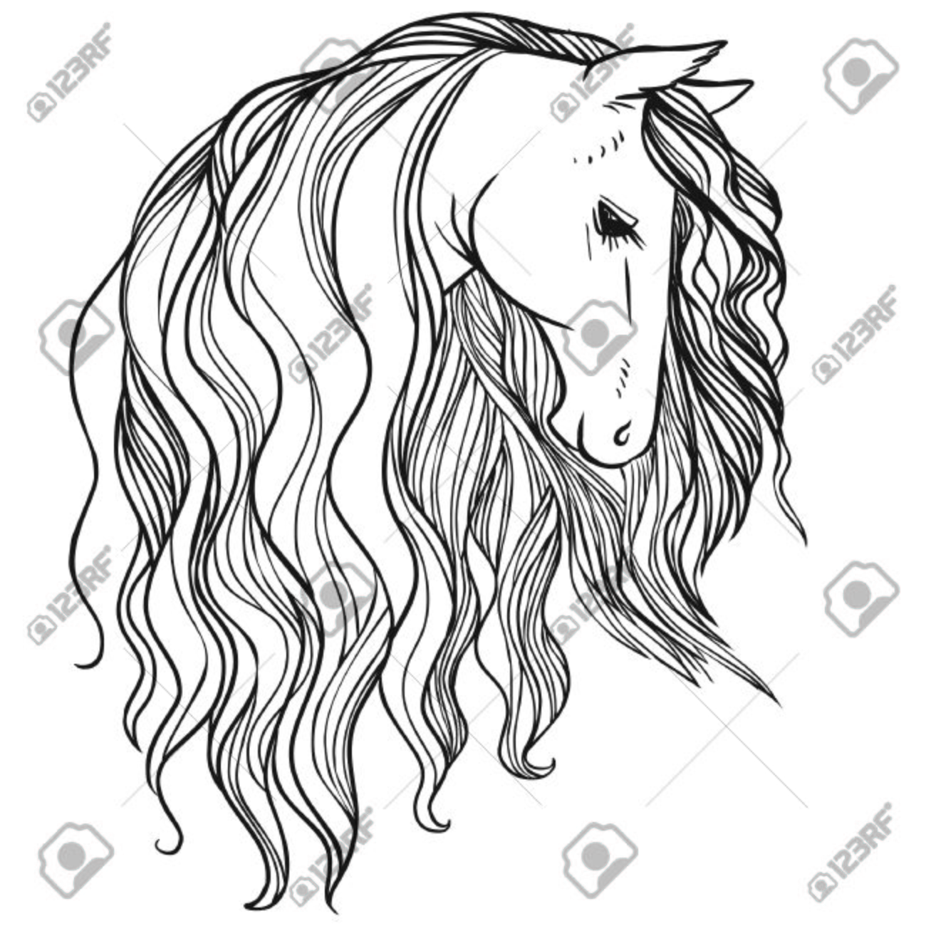 1300x1300 Horse's Head With Beautiful Long Mane. Vector Hand Drawn