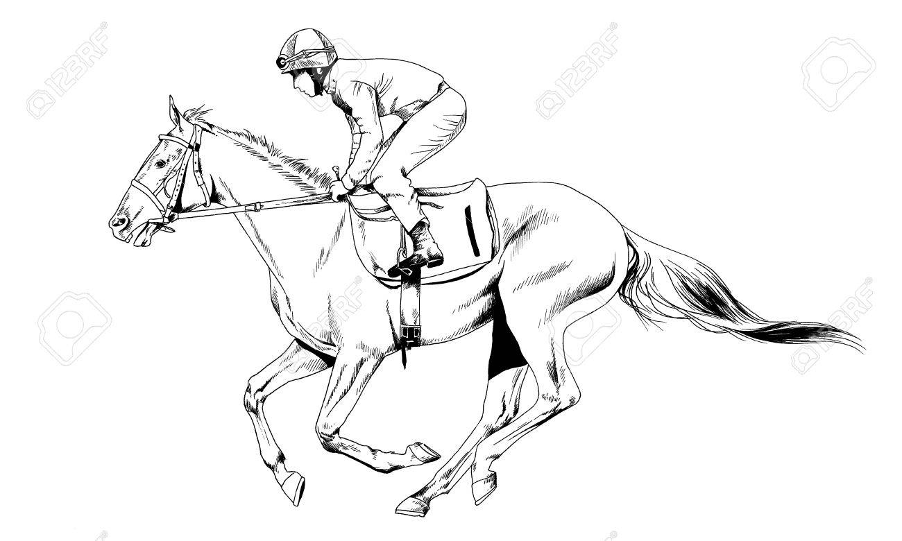 1300x780 Race Horse Without A Harness Drawn In Ink By Hand On White