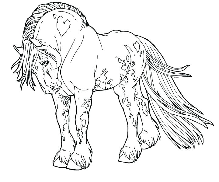 720x598 Horses Coloring Pages Printable Horse Coloring Pages Printable