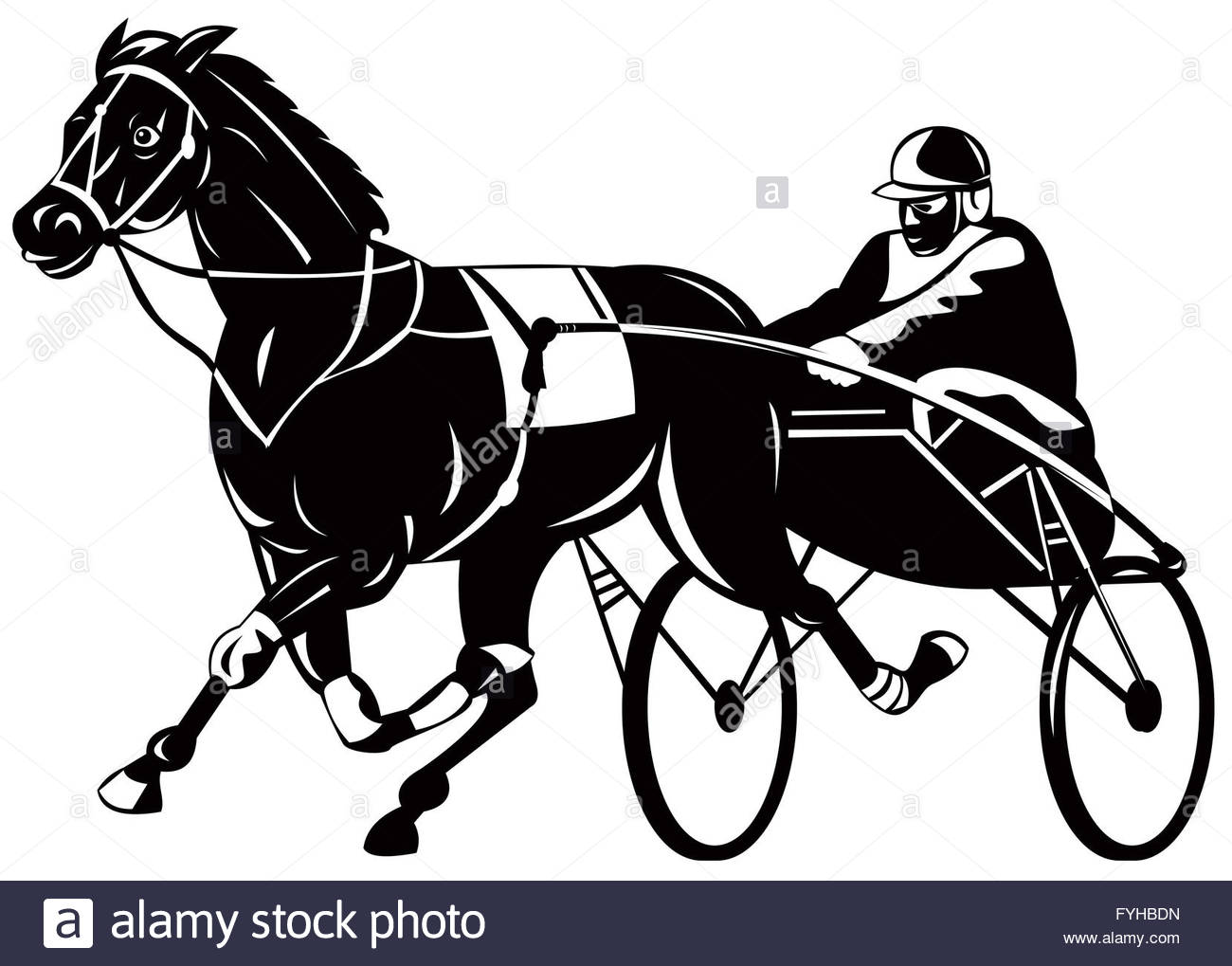 1300x1019 Horse And Jockey Harness Racing Stock Photo, Royalty Free Image