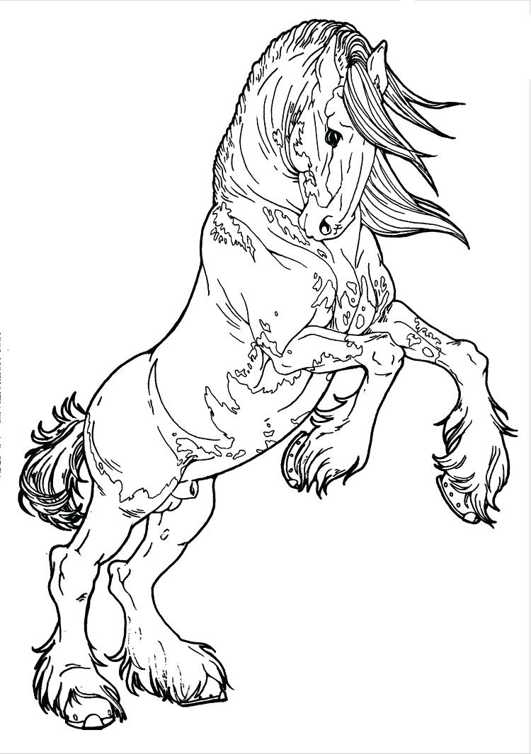 750x1066 Coloring Realistic Horse Coloring Pages Free. Realistic Horse