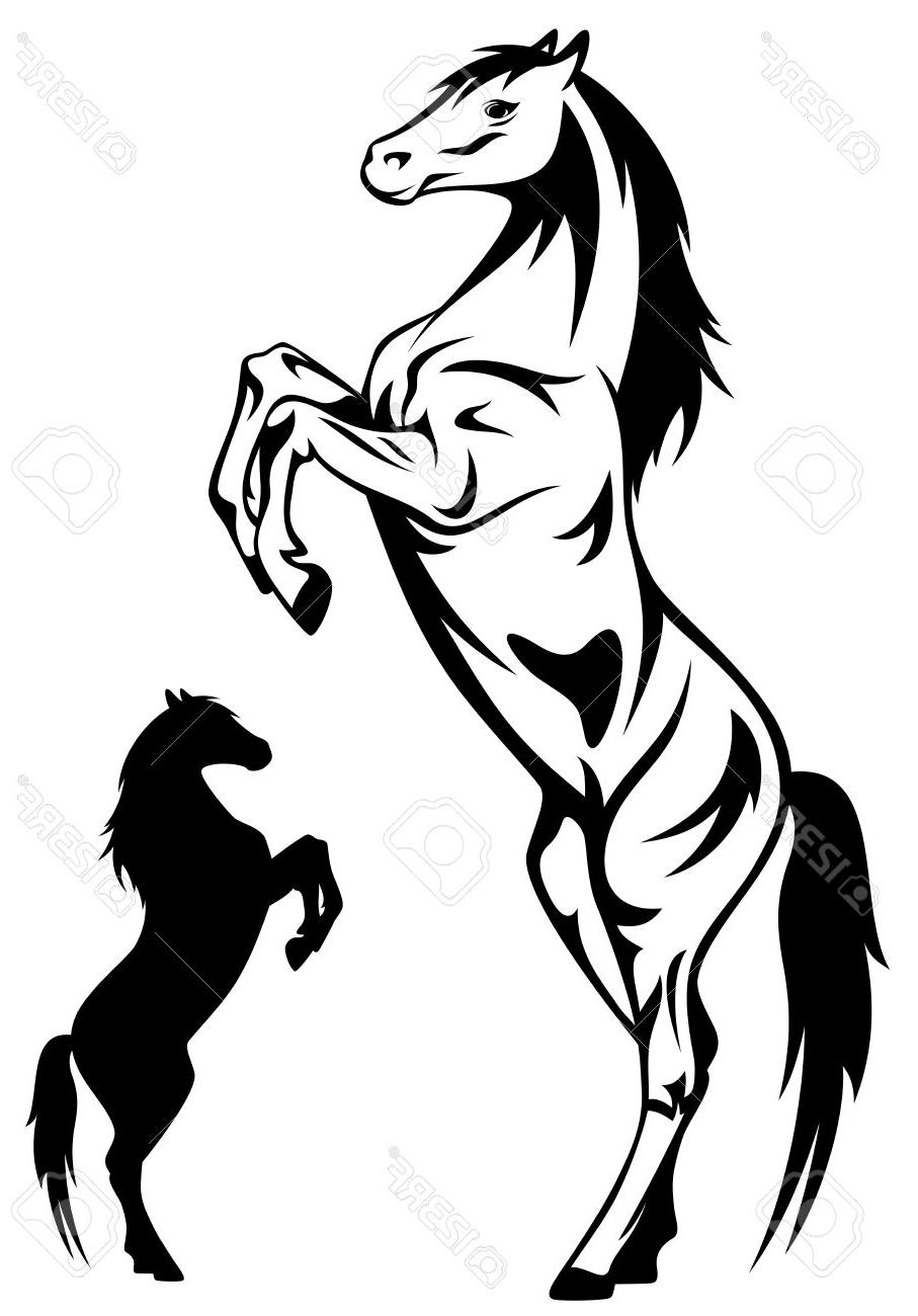 907x1300 Hd Rearing Horse Stock Vector Silhouette Drawing File Free