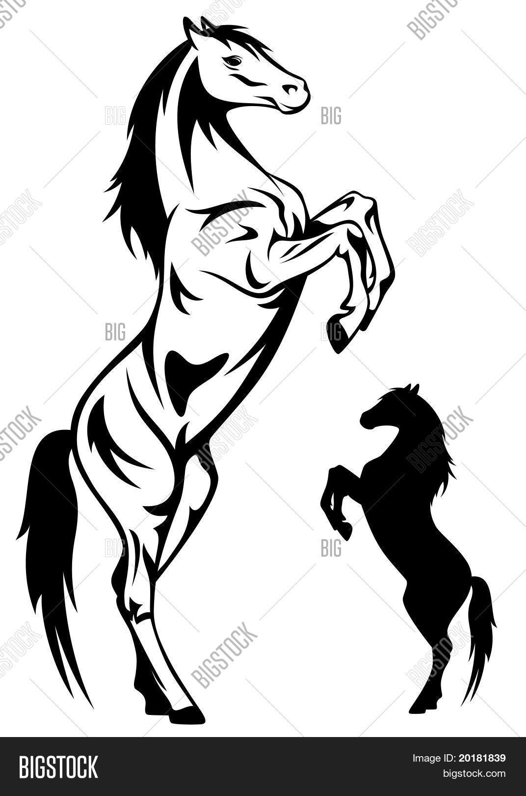 1072x1620 Horse Rearing Vector Amp Photo Bigstock