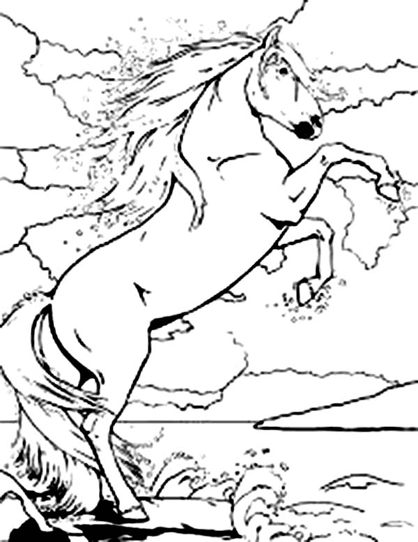 600x777 Rearing Horse Coloring Pages