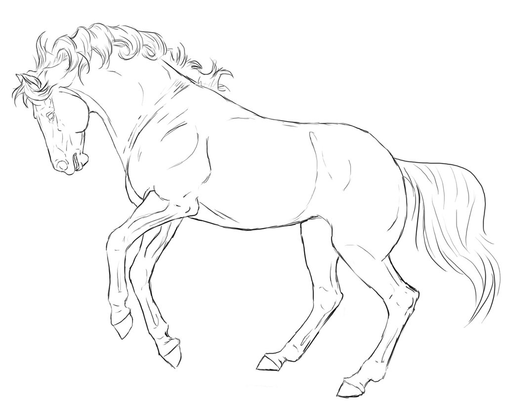 1024x825 Rearing Horse Line Art By