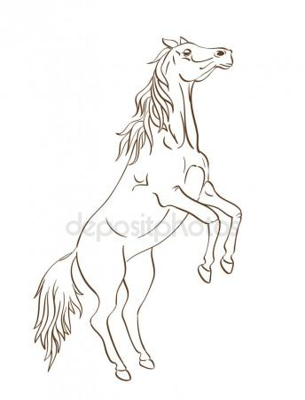 344x450 Horse Drawing. Vector Illustration Stock Vector Ghenadie