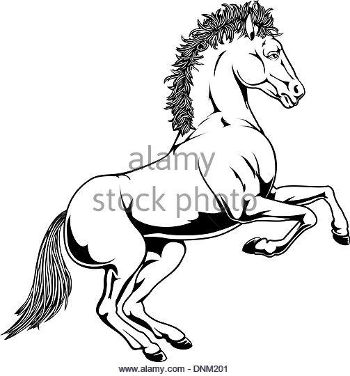 503x540 Black Horse On Hind Legs Stock Photos Amp Black Horse On Hind Legs