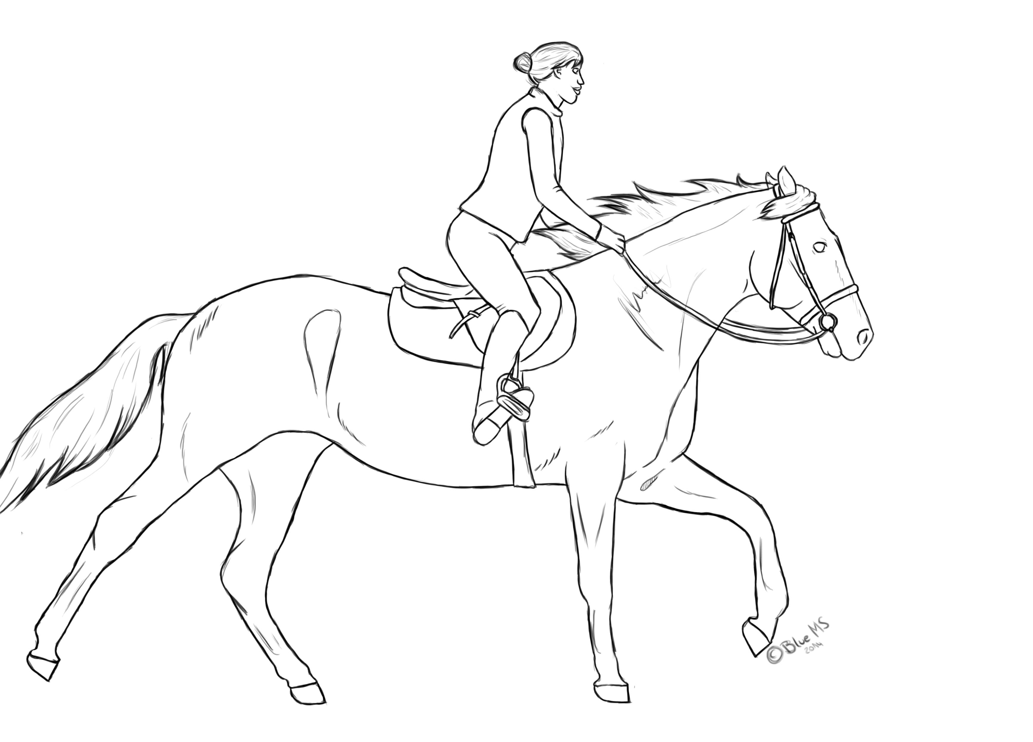 3468x2492 Horse + Rider
