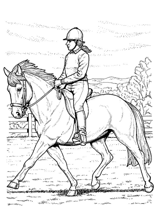531x750 Coloring Page Horse Back Riding