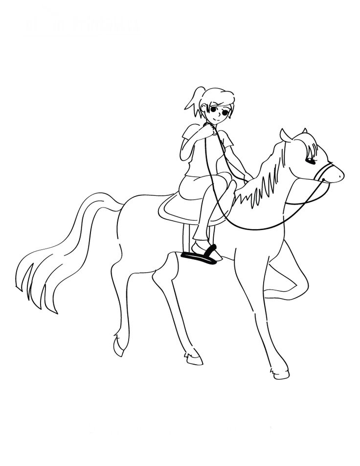 Horse Riding Drawing