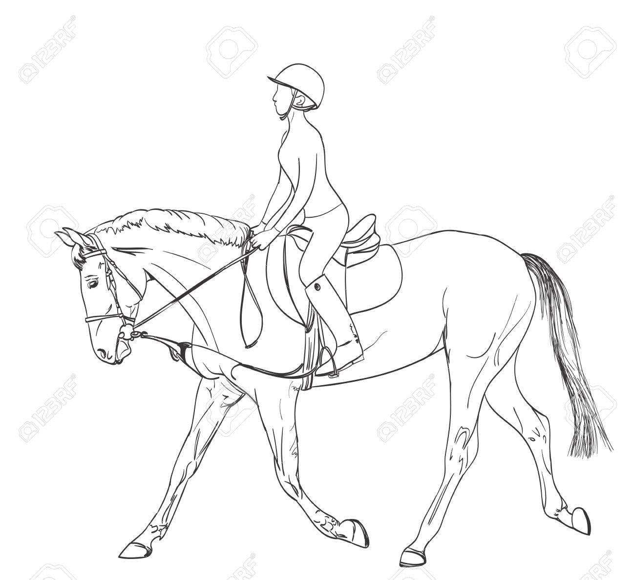 1300x1188 Horse Rider Line Art Drawing. Equestrian Sport Training Theme