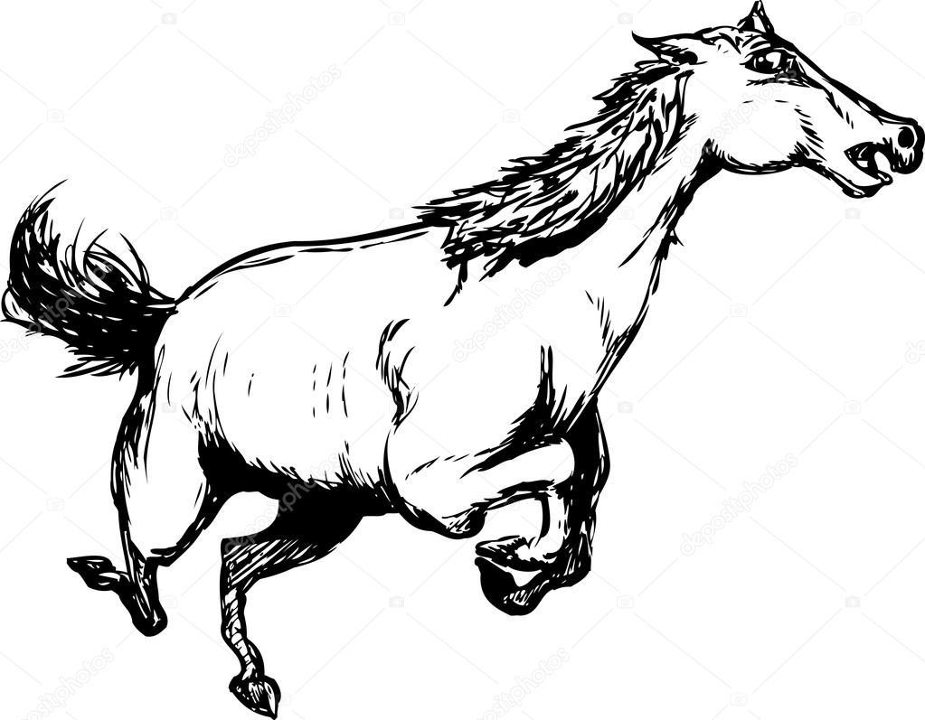 1023x797 Outlined Wild Horse Running Stock Vector Theblackrhino