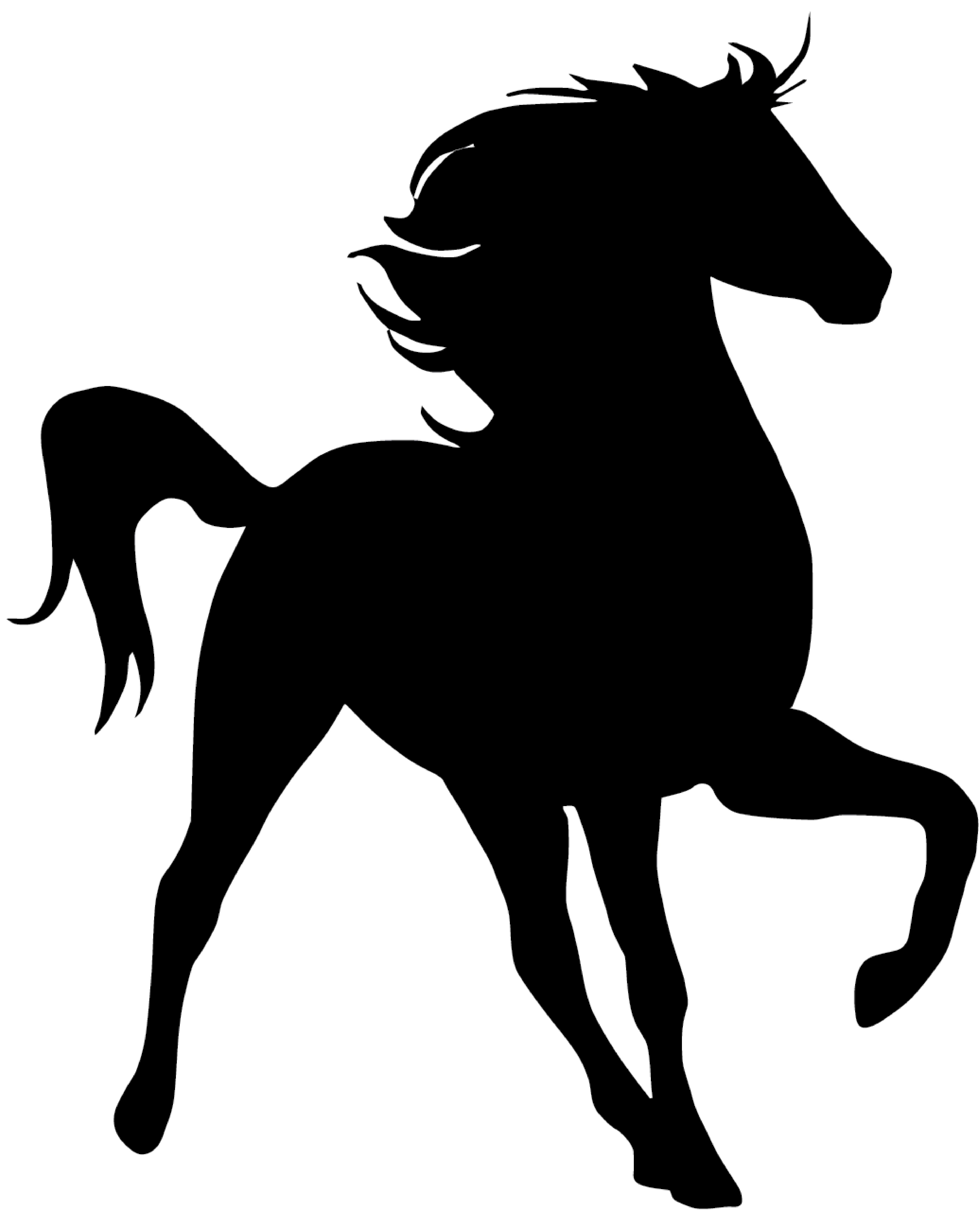 4317x5342 Kohala Youth RanchHOME.horse.silhouette