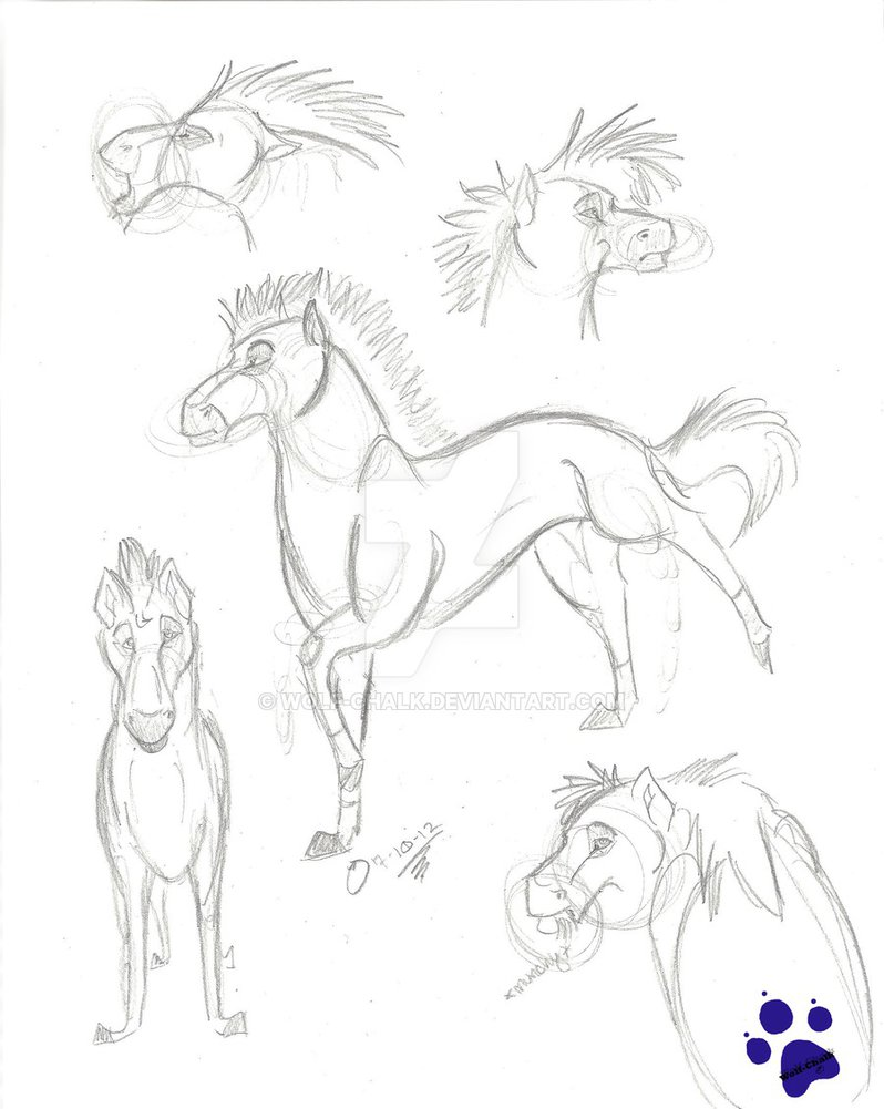 798x1001 Horse Sketches By Wolf Chalk
