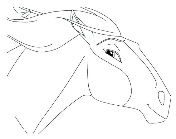 564x446 Spirit Stallion Of The Cimarron Coloring Pages To Print Horse