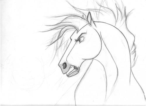 500x364 Spirit Stallion Of The Cimarron