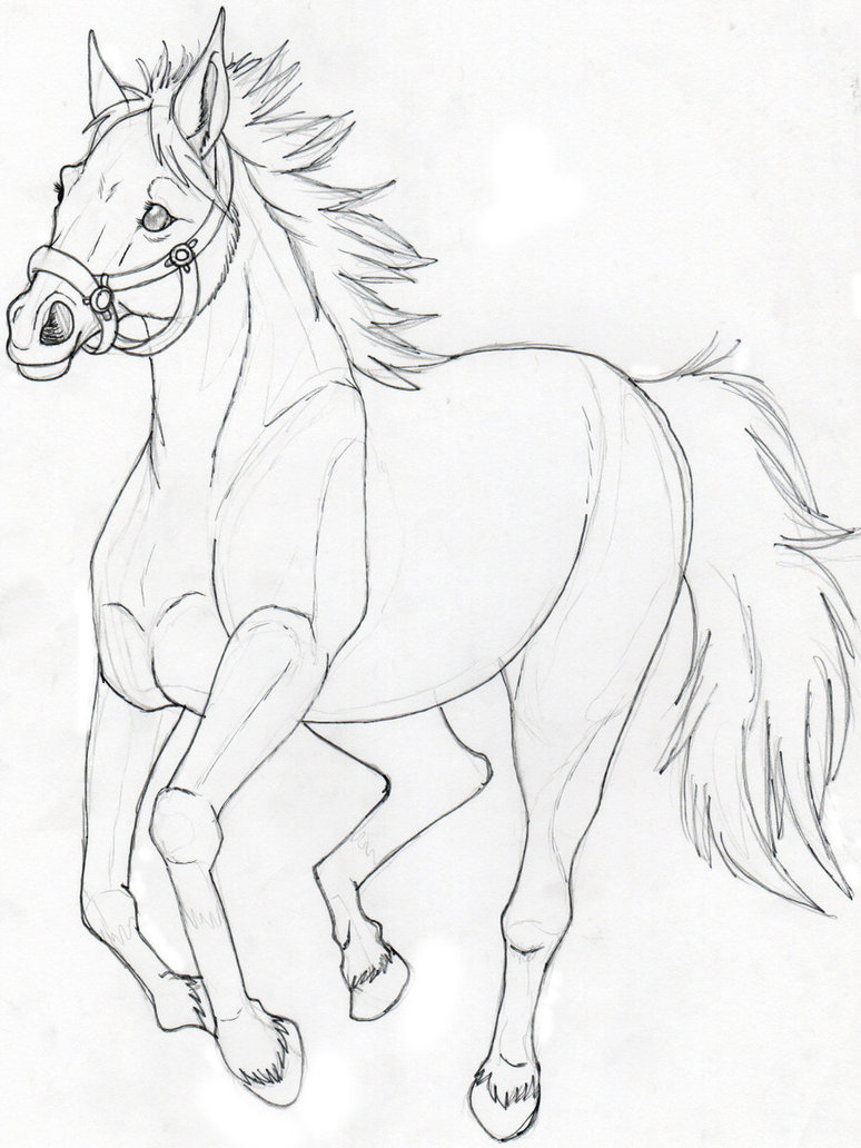 774x1032 A Horse Sketch Not Done By Suenta Deathgod