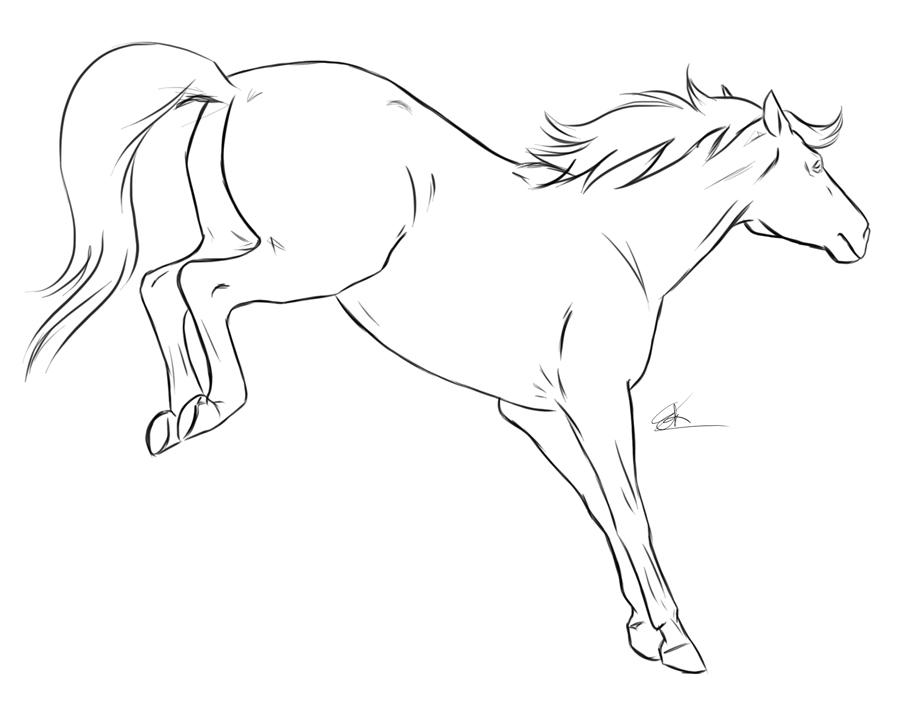900x715 Horse Bucking By Chronically