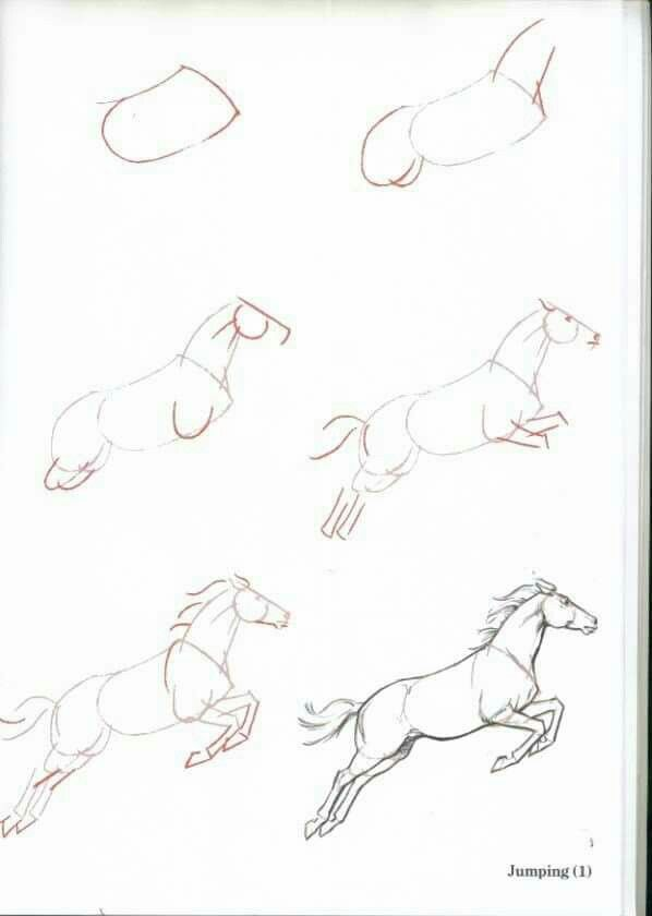 598x840 How To Draw A Jumping Horse Tutorials Jumping