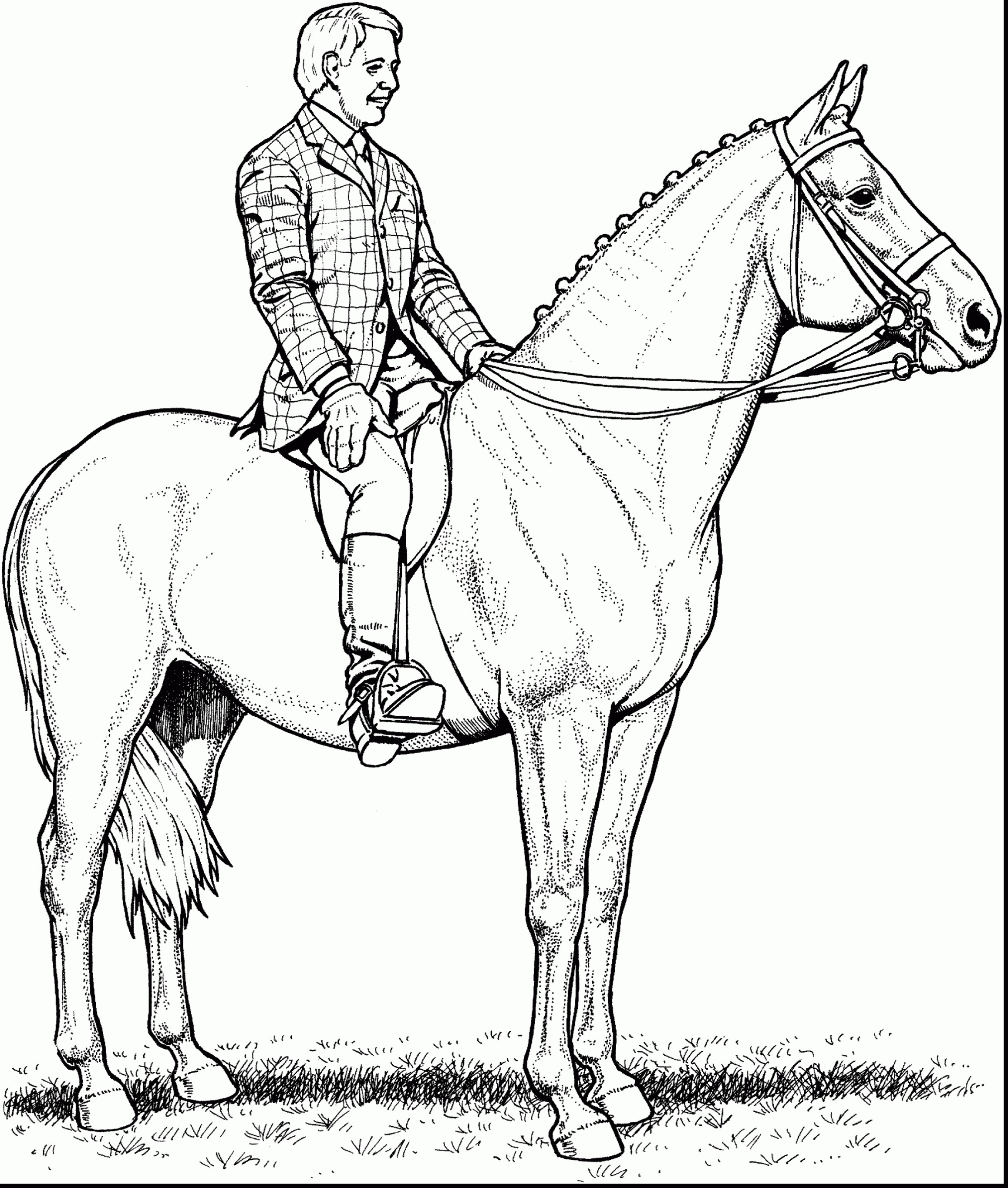 2315x2730 Coloring Pages Horse Trailer New Excellent Horses To Print 40 3517
