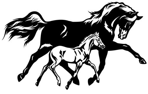 500x318 Creative Running Horse Design Vector Set 05