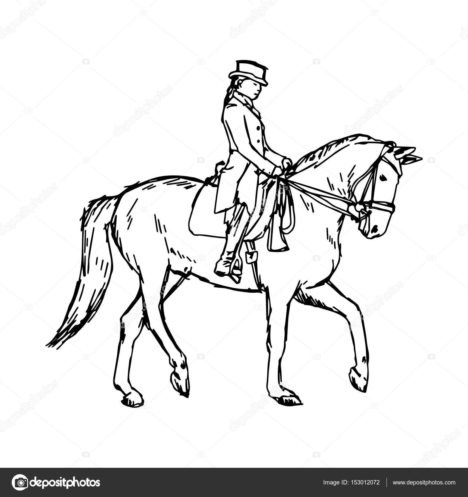 1600x1700 Equestrian Horse