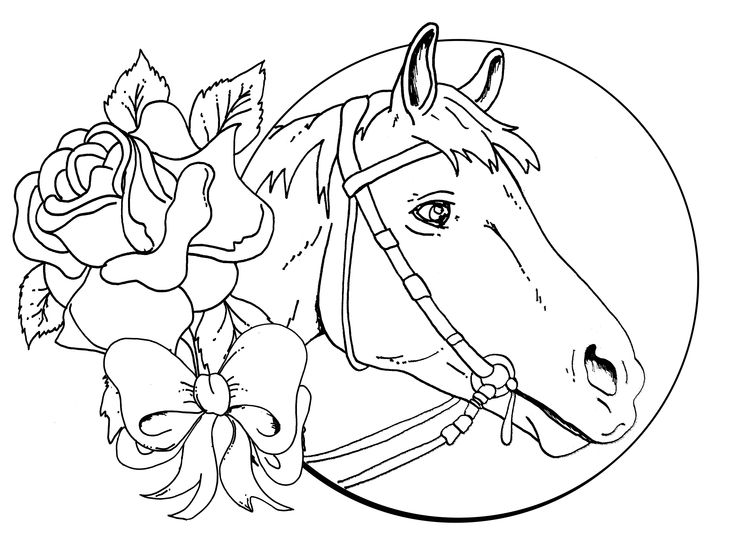736x551 Horse Face Coloring Page436750