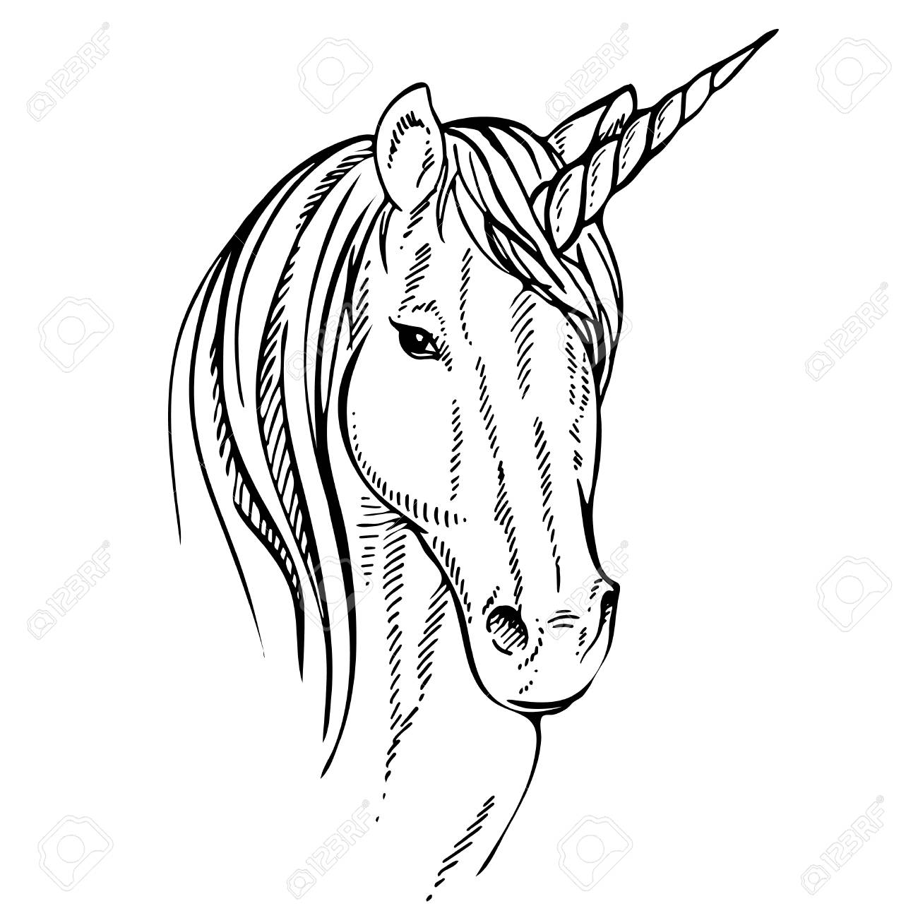 1300x1300 Sketch Unicorn, Hand Drawn Ink Illustration.unicorn Horse Animal