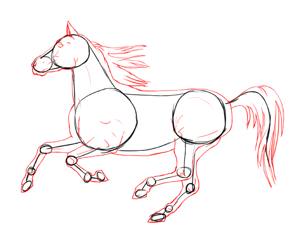 595x486 Draw A Realistic Looking Horse Horse, Draw And Animal Drawings