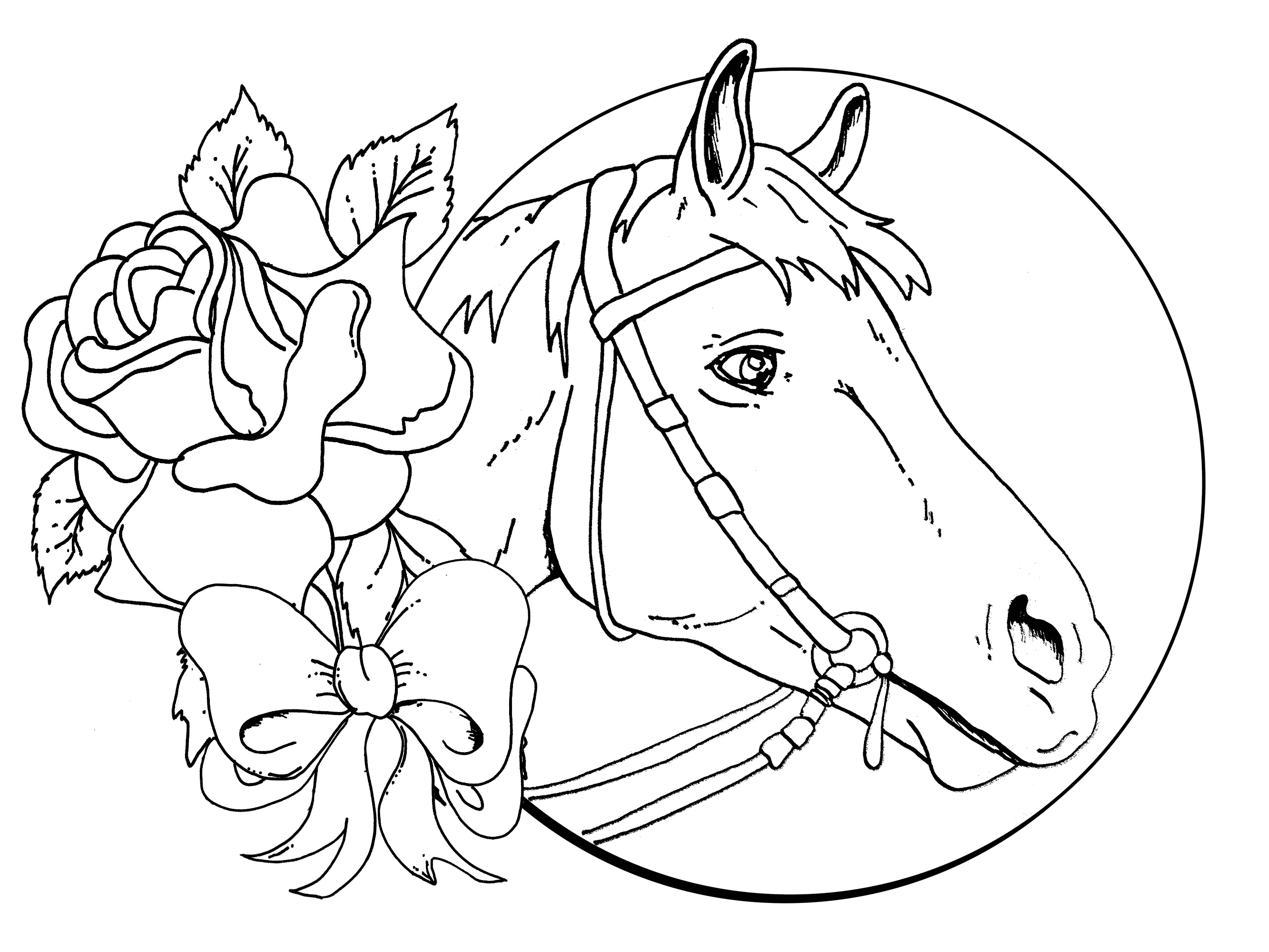2667x2000 Horse Head Coloring Page