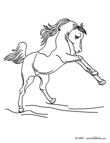 363x470 Wild Horse Coloring Pages
