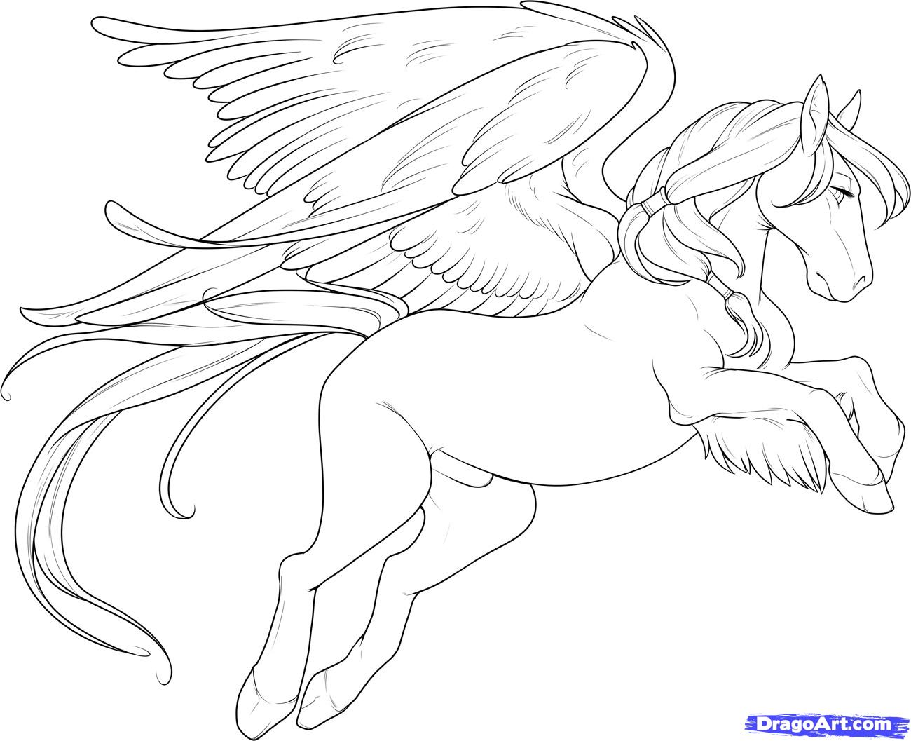 Horses Step By Step Easy Drawing At Getdrawings Com Free For