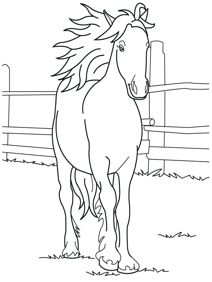 736x981 Coloring Page Of A Horse Best Collection Coloring Pages