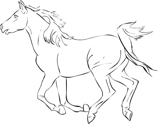 504x397 Coloring Pages Horses Easy Cartoon Horse Coloring Pages Kids