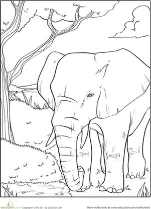 301x415 Elephant Ears Costume Activity