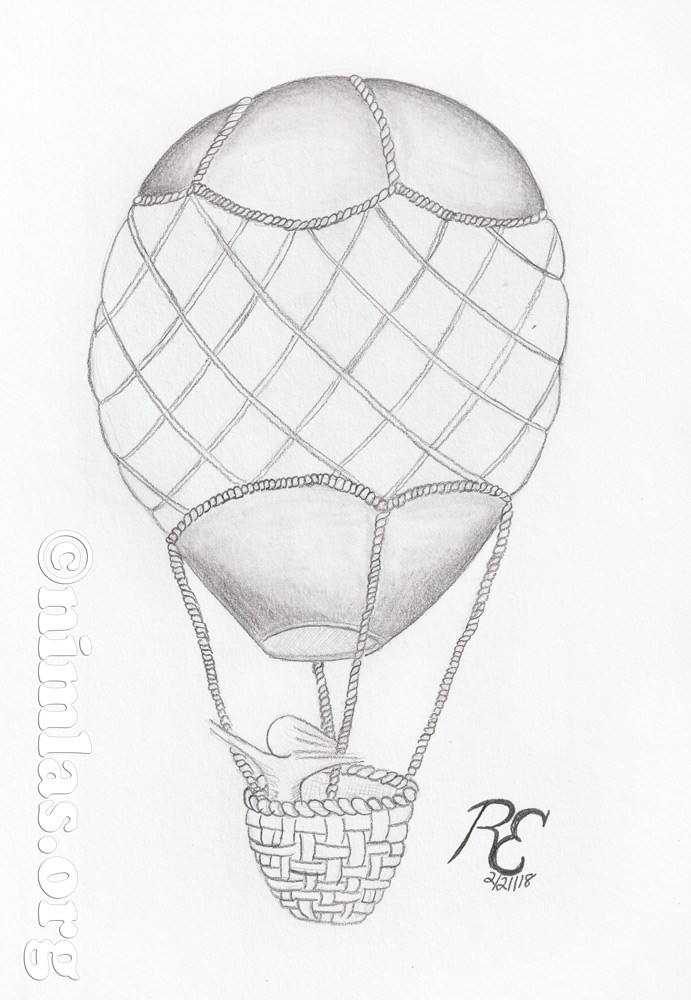 691x1000 Daily Creativity Hot Air Balloon Pencil Drawing On Papernimlas