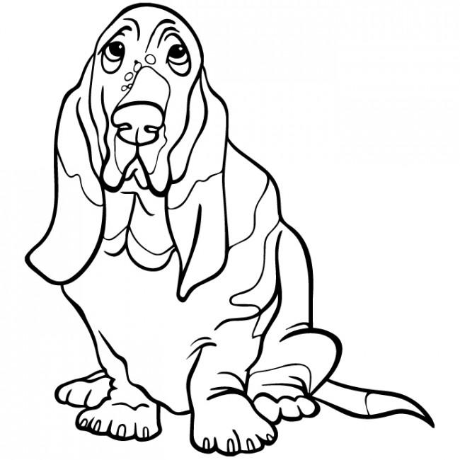 650x650 Basset Hound Dog Wall Sticker Animal Pets Wall Decal Kids Canine
