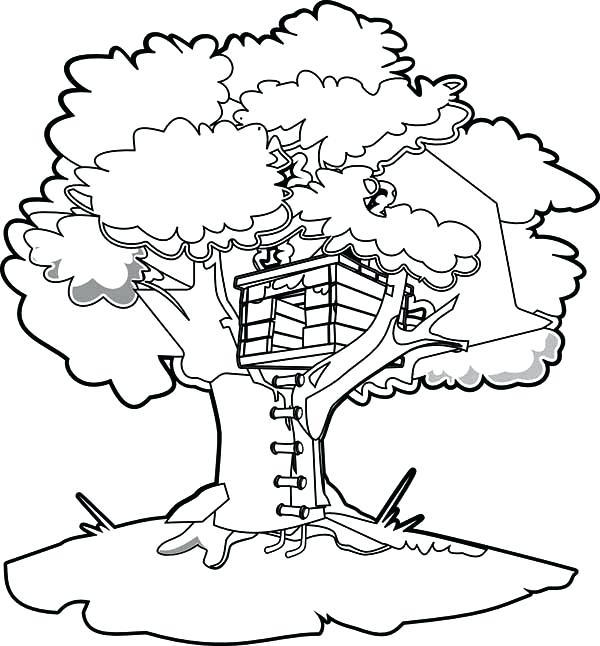 600x646 Kids Tree House Drawing