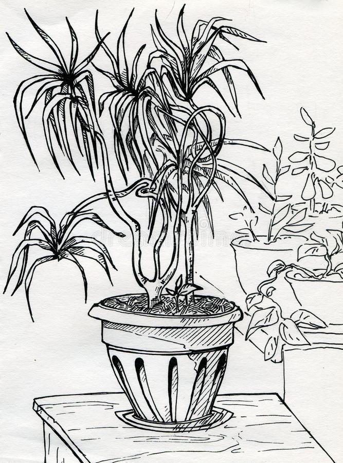 667x900 Elements Mr. Mck.'s Art Page Page 2