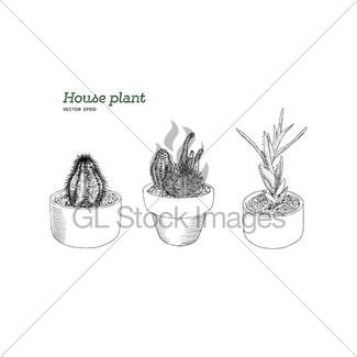 325x325 House Plant In Pot, Hand Draw Sketch Vector. Gl Stock Images