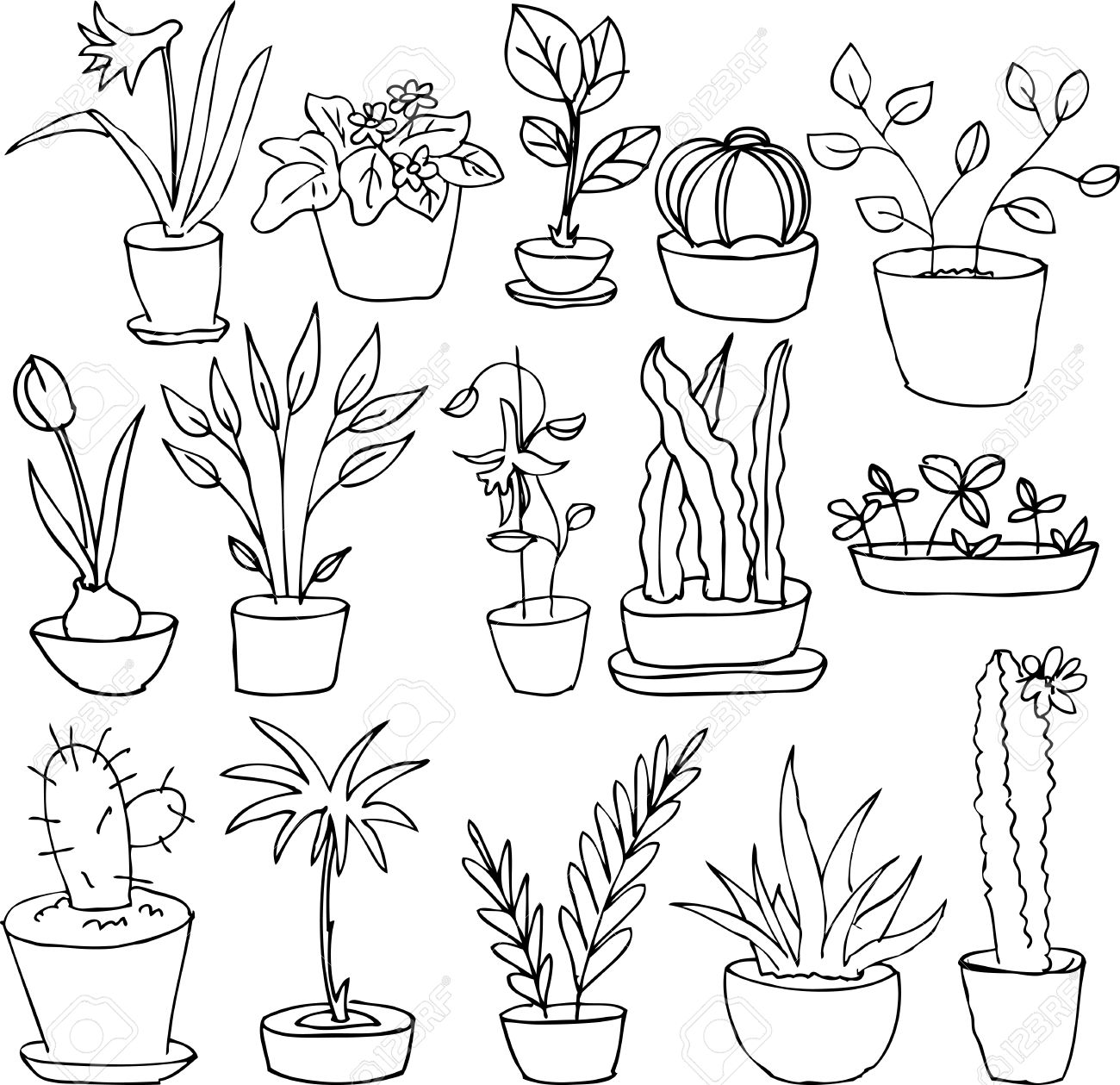 1300x1259 Line Drawing Home Plants, Hand Drawn Vector Illustration Royalty