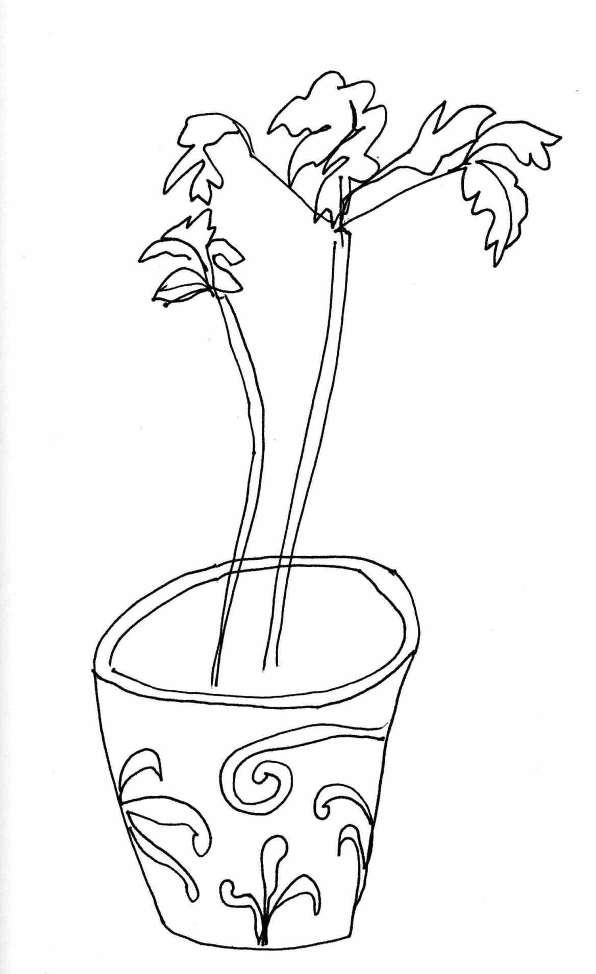 1168x1909 Potted Plants Drawings Kloiding.date