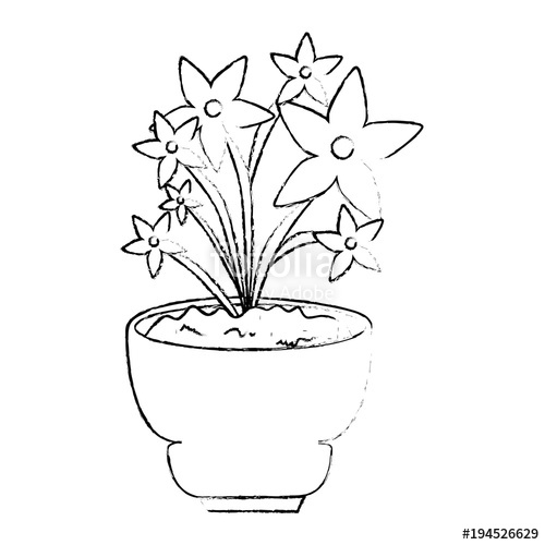 500x500 Beautiful Houseplant With Flowers In Pot Vector Illustration