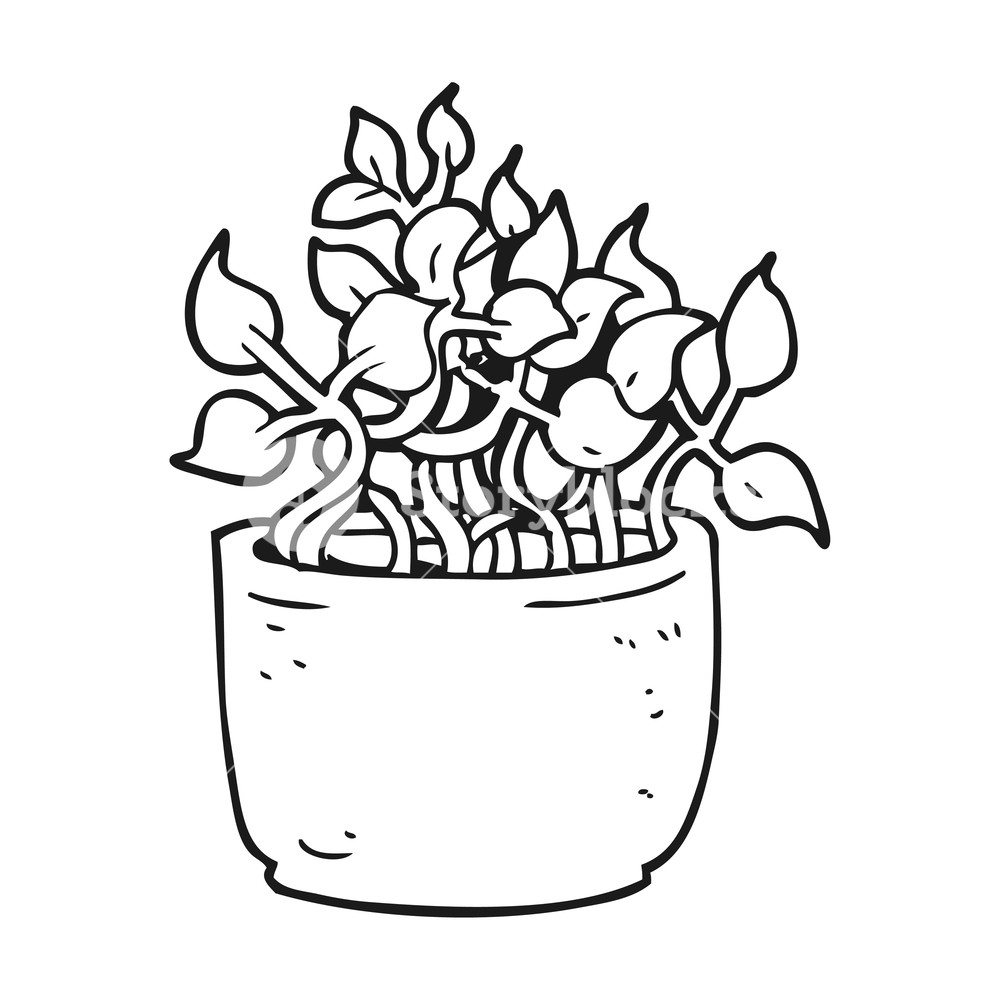 1000x1000 Freehand Drawn Black And White Cartoon House Plant Royalty Free