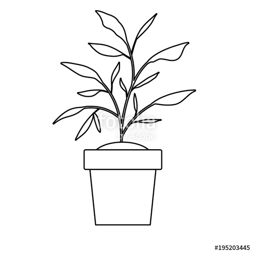 500x500 House Plant In Pot Vector Illustration Design Stock Image