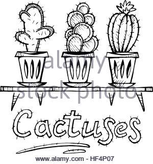 300x321 Vector Set Of Cute House Plants In Pots Stock Vector Art