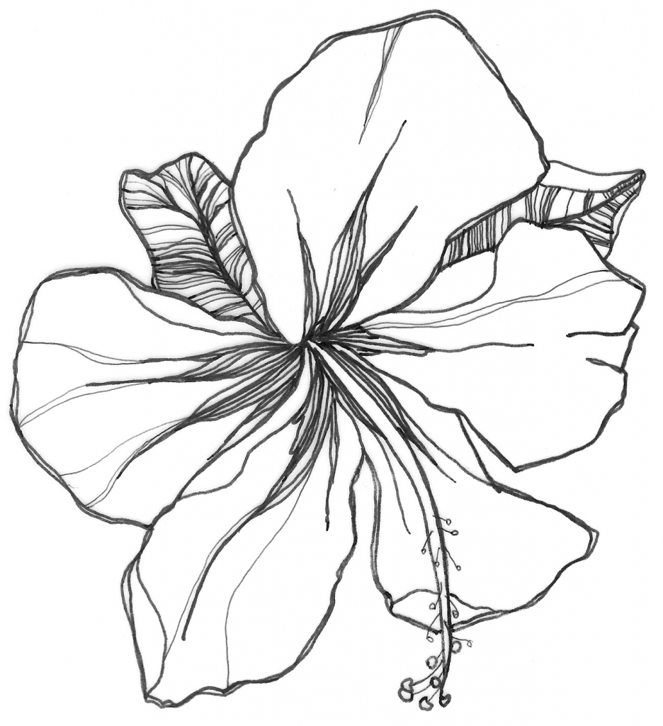 936x1024 Easy Drawing Of Flower Easy Flower Pictures To Draw Beautiful
