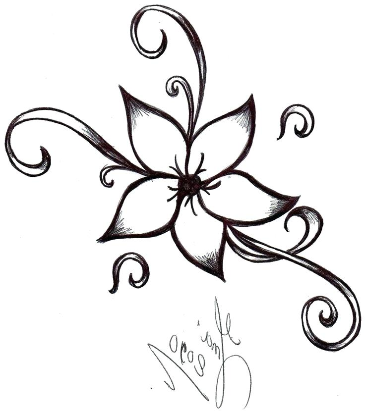 736x830 Flowers Drawing Drawing Of A Flower 6 Nice Design Draw Flower Step